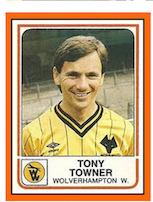 5-wolf-towner